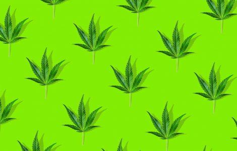 cannabis marketing plan online